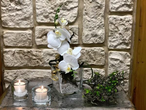 Tischgesteck Tischdeko Nr. 26 Glaswürfel mit Orchidee / Phalaenopsis und Golddraht