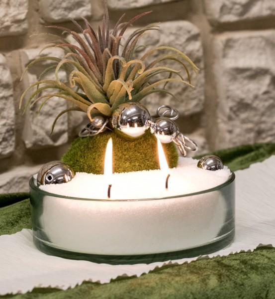 Gesteck Nr.6 mit Kerzensand, weiss, Sukkulente auf Moospucker