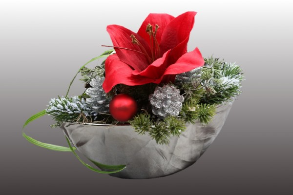 Adventsgesteck,silber Schale mit roter Amarillis, Gesteck,Wintergesteck bei HIKO Eventdeko